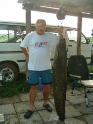 25 kg-os harcsa