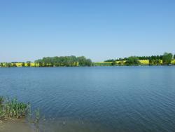 Tavaszi kép2