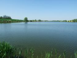 A tó tavasszal