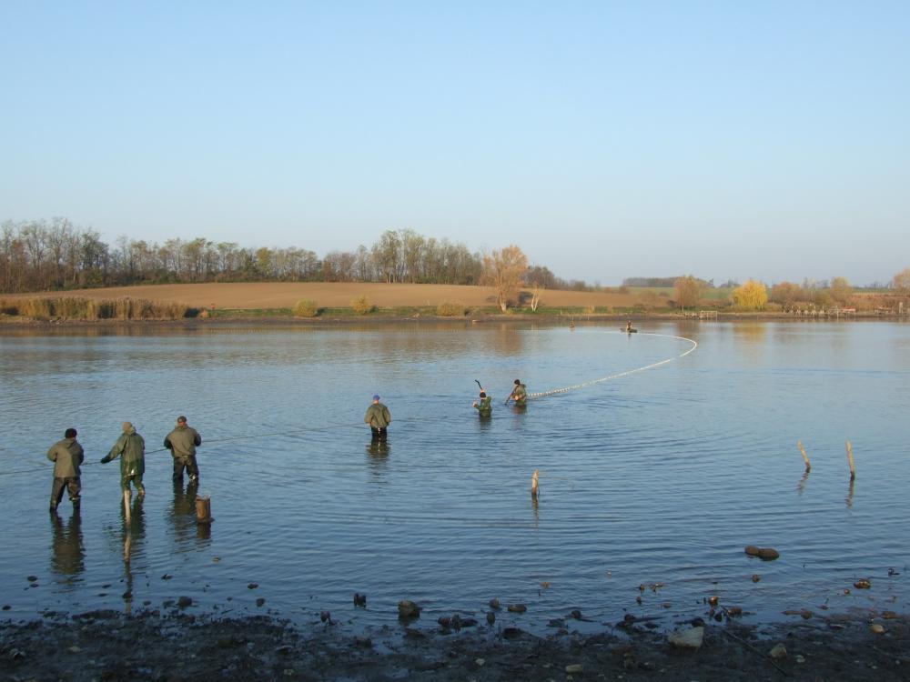 Halászat_2