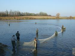 Halászat_4