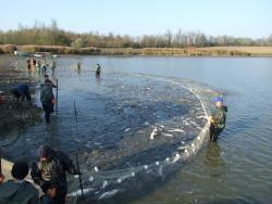 Halászat_5