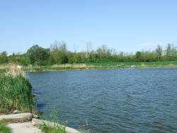 Hársasberki tó